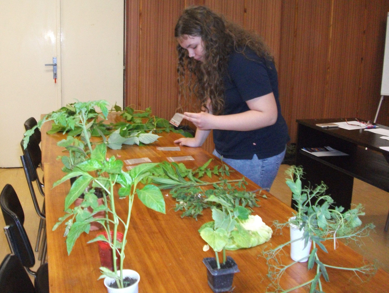 Mladý záhradkár – vedomostná súťaž
