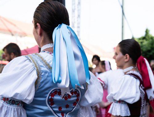 Regionálna kultúra Matice slovenskej – výzva na rok 2020